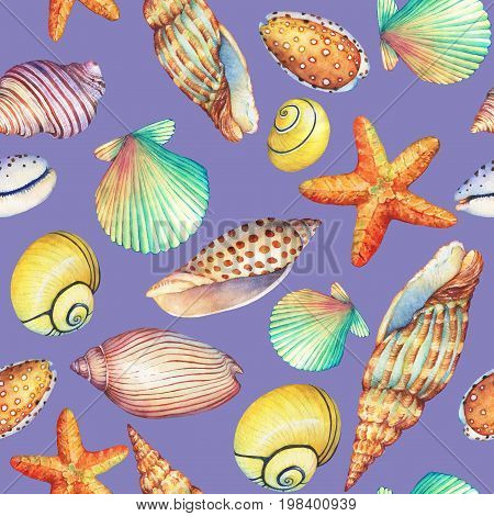 Seamless pattern with underwater life objects, isolated on pastel violet background. Marine design-shell, sea star. Watercolor hand drawn painting illustration. Element for posters, greeting cards.