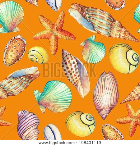 Seamless pattern with underwater life objects, isolated on orange background. Marine design-shell, sea star. Watercolor hand drawn painting illustration. Element for posters, greeting cards.