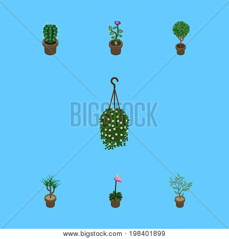 Isometric Plant Set Of Flower, Tree, Houseplant And Other Vector Objects