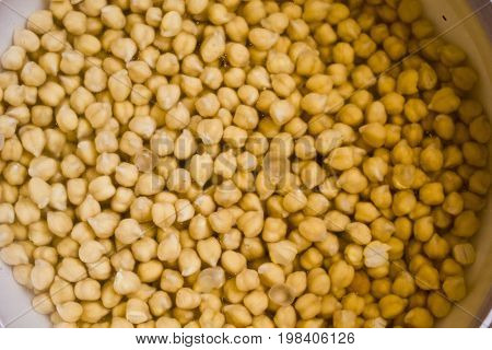 LASTRA A SIGNA, ITALY - JULY 22 2014: Chickbeans soaked in water
