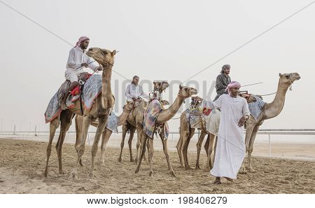 Camels In Rub Al Khali Desert At The Empty Quarter, In Abu Dhabi, Uae