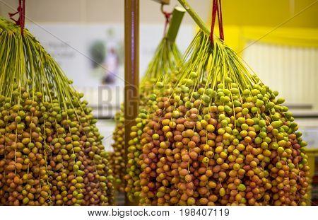 New Season Dates At The Liwa Date Festival
