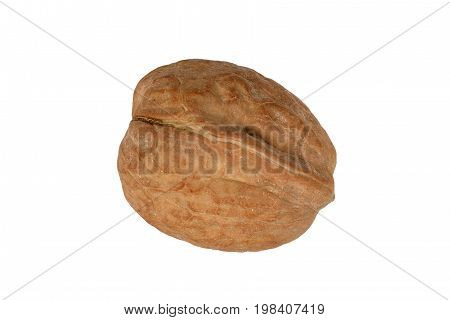 Walnut in its shell cut out and isolated on a white background