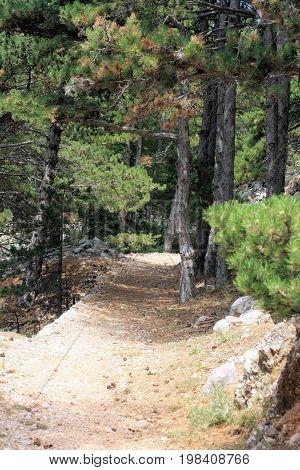 hiking in Baska, island Krk in Croatia