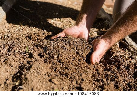 Man holding soil in garden on a sunny day