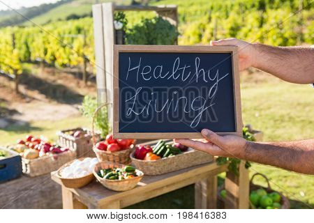 Close-up of man holding slate with text at vegetable stall in vineyard