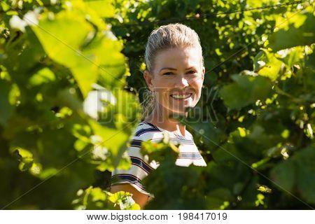 Portrait of female vintner standing in vineyard on a sunny day