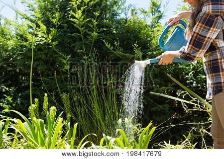 Woman watering plants with watering can in garden on a sunny day