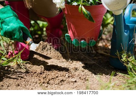 Close-up of woman planting sapling in garden on a sunny day