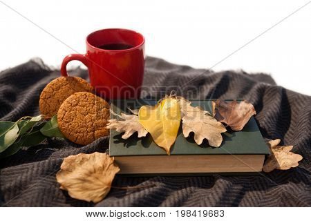 Black coffee, cookies, diary and autumn leaves on woolen blanket against white background