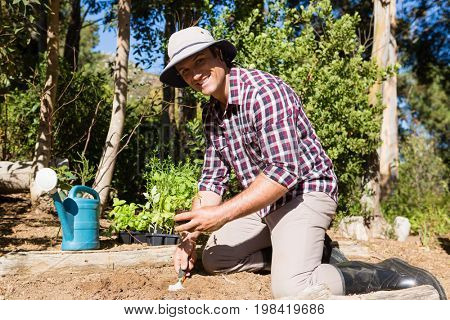 Happy man planting sapling in garden on a sunny day