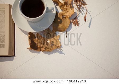 Overhead of autumn leaves, black tea and open book on white background