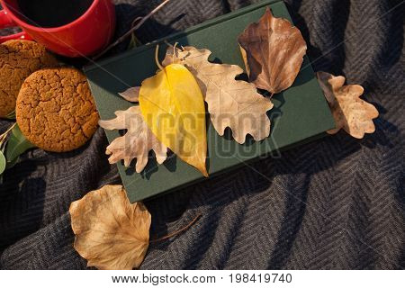 Overhead of black coffee, cookies, diary and autumn leaves on woolen blanket