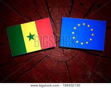 Senegal Flag With Eu Flag On A Tree Stump Isolated