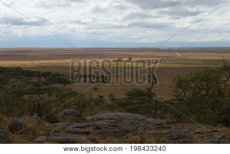 An infinite road from Serengeti to Ngorongoro crater in dry season of March
