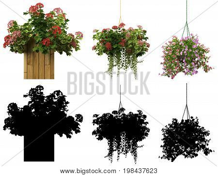 3D Rendering Of A Realistic Flower Pot Collection Isolated On White With Alpha Matt