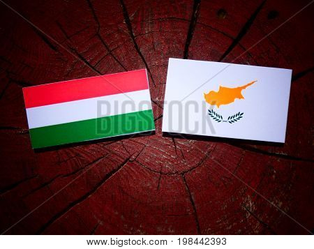 Hungarian Flag With Cypriot Flag On A Tree Stump Isolated