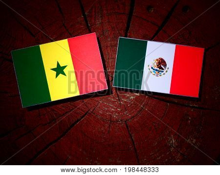 Senegal Flag With Mexican Flag On A Tree Stump Isolated