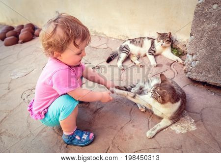 Happy little caucasian girl playing with two lazy cats