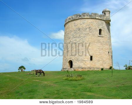 horses grazing a pasture in front of a castle like tower in Varadero Cuba poster