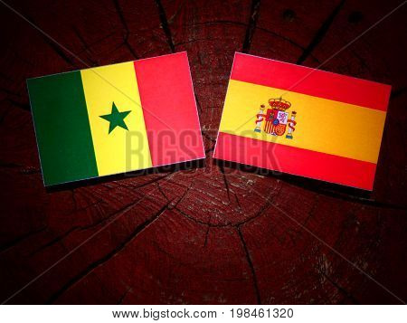 Senegal Flag With Spanish Flag On A Tree Stump Isolated