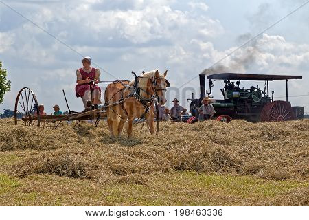 NEW HOLLAND PENNSYLVANIA - August 4 2017: A young Mennonite woman rakes hay at Big Spring Farm Days. This is an annual event demonstrating traditional threshing and harvesting methods using restored antique and vintage tools.