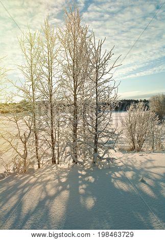 Winter snowdrift landscape. Winter scene snowflake landscape