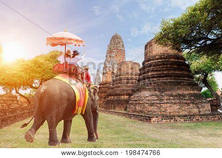 Tourists riding elephants in Ayutthaya Thailand sunrisesun light
