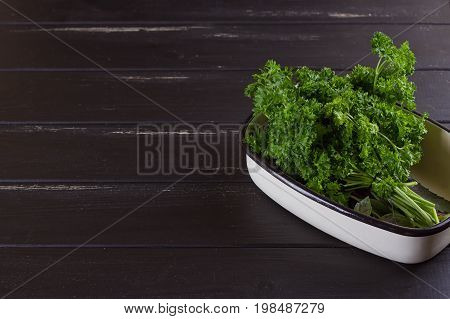A bunch of fresh parsley in a ceramic tray on a black background. Fresh greens for salad