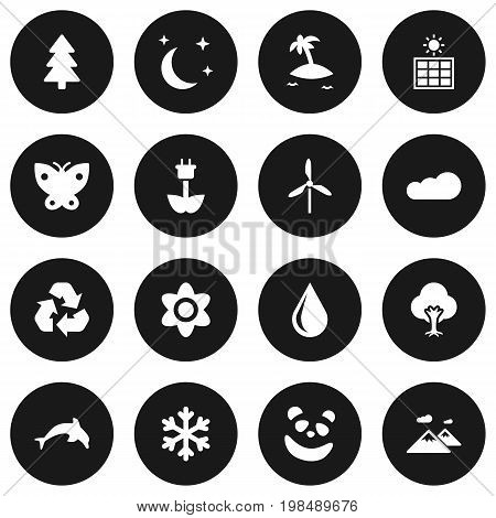 Collection Of Isle Beach, Pinnacle, Conservation And Other Elements.  Set Of 16 Nature Icons Set.