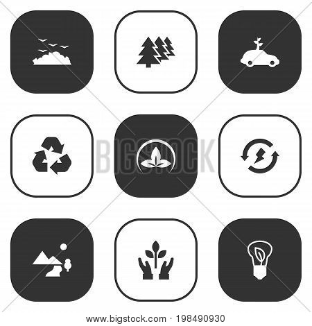 Collection Of Cleaning, Reforestation, Protection And Other Elements.  Set Of 9 Bio Icons Set.