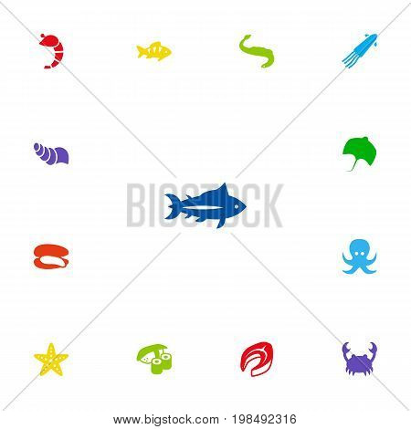 Collection Of Beefsteak, Shell, Devilfish And Other Elements.  Set Of 13 Food Icons Set.