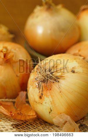Heads Of Raw Yellow Onions
