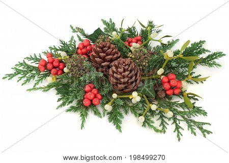 Winter and christmas floral display with holly, mistletoe, ivy, cedar cypress and juniper leaf sprigs and pine cones on white background.