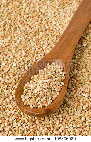Raw natural uncooked buckwheat seed kernels in wooden spoon on buckwheat seed background