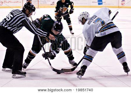 PHOENIX, AZ - DECEMBER 18: Utah Grizzlies wing Scott Thauwald (#24) and Phoenix Roadrunners center Gino Guyer (#7) face off during the ECHL hockey game on December 18, 2008 in Phoenix, Arizona.