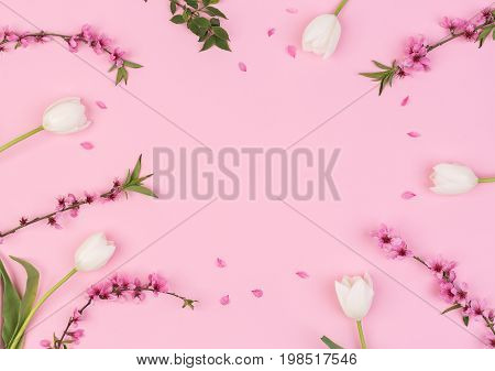 women day, congratulation, femininity concept. top view of adorable flowers, creamy white tulips, and blooming brunches of cherrytree, with free bright pink space for text