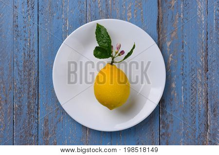 Fresh ripe lemon on a white plate and rustic blue wooden table.