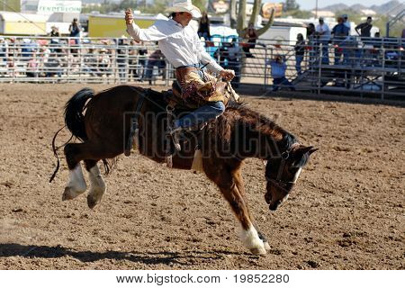 APACHE JUNCTION, AZ - FEBRUARY 28: A competitor rides a bucking horse in the saddle bronc competition at the Lost Dutchman Days Rodeo on February 28, 2009 in Apache Junction, AZ.