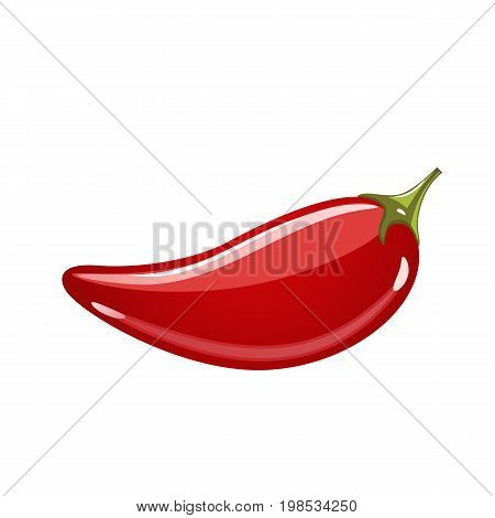 Chilli pepper isolated on white background. Red hot pepper icon realistic vector