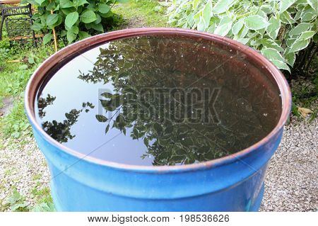 A garden barrel for watering in which the leaves are reflected.
