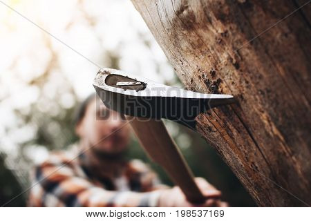 Lumberjack  In Modern Clothes With A Sharp Ax In His Hands Is Chopping A Tree. Ax Close-up