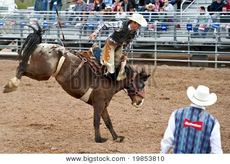 APACHE JUNCTION, AZ - FEBRUARY 27: A cowboy rides a bucking horse in the saddle bronc competition at the Lost Dutchman Days Rodeo on February 27, 2010 in Apache Junction, Arizona.