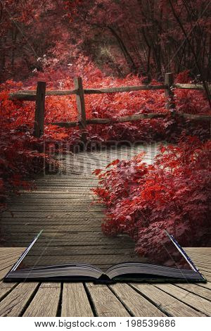 Beautiful Surreal Red Landscape Image Of Wooden Boardwalk Throughforest In Spring Concept Coming Out