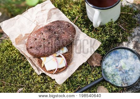 Sandwich With Bacon (pork) And Hot Drink In The Forest