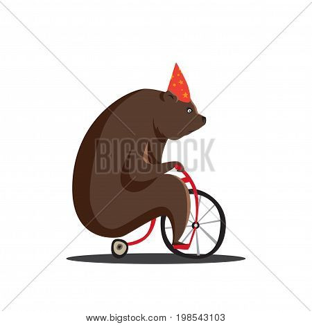 Bear on a bicycle. circus performances presentation show