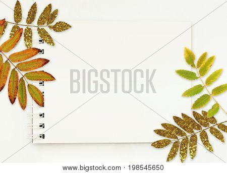 Notepad with white empty pages and autumn leaves on white background. Flat lay. Top view.