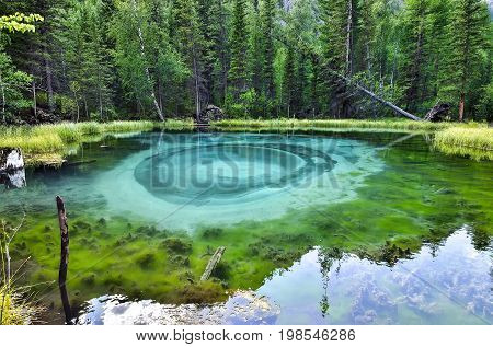 Amazing blue geyser lake in the mountains of Altai Russia. Unique turquoise lake with crystal clear water and oval circular divorces which all the time change because geyser lifts the blue clay from the bottom