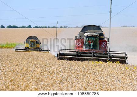 Kharkiv Region Ukraine - July 25 2017: Combines harvest wheat on a field in sunny summer day in Kharkiv Region Ukraine on July 25 2017.