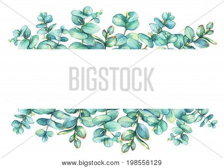 Banner with a branches of silver-dollar eucalyptus (Eucalyptus cordata), plant also known as Silver Dollar Gum. Watercolor hand drawn painting illustration.